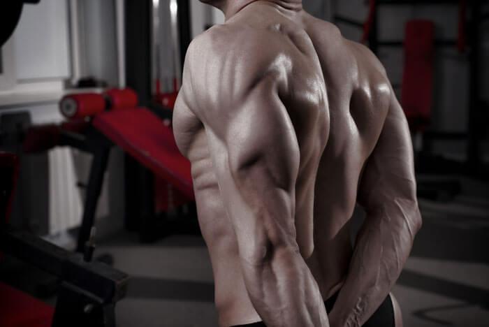 ダイヤモンドプッシュアップは、上腕三頭筋をメインに鍛えるトレーニング